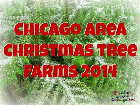 christmas tree farm in chicagoland area chicago area tree farms 2014