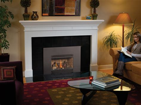 Fireplace Inserts Seattle by Fireplace Inserts Seattle Interior Design