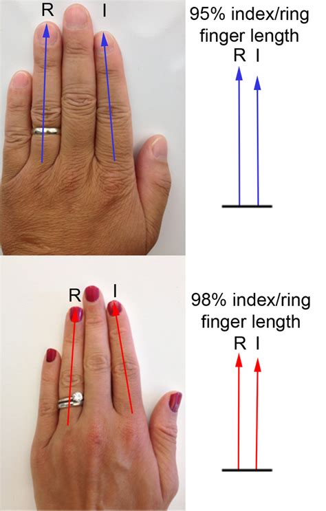 how to finger snpwatch a tale of two fingers 23andme blog