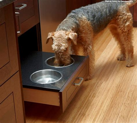 how to create a pet friendly kitchen pet friendly design making room for the dog dish