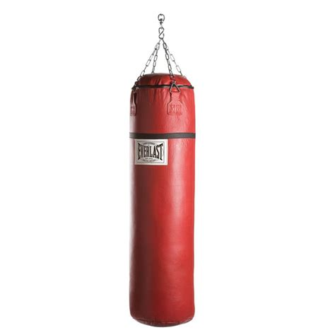 the gallery for gt everlast canvas punching bag