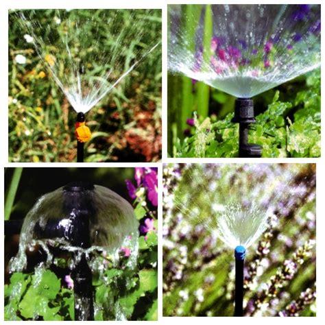 irrigatori per vasi microirrigatori a goccia per impianti di irrigazione