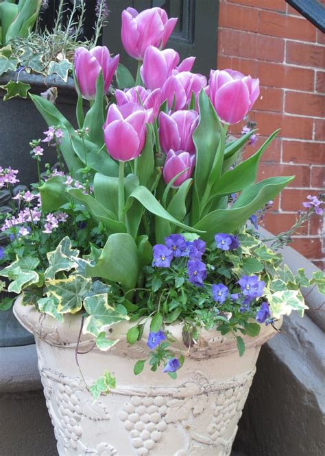 Tulip Planter by Inspiring Pots And Planters Outdoor Container