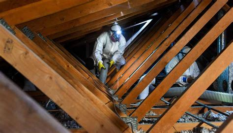attic cleaning attic cleaning service attic decontamination