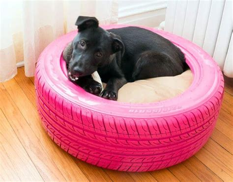 cucce per cani da interno economiche come costruire una cuccia per cani da interno cuccia per