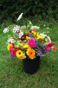 Best Flowers For Garden Top 50 Cut Flowers Higgledy Garden