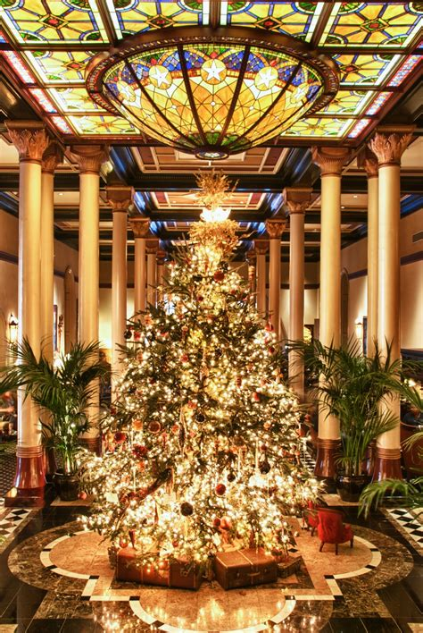 domain austin christmas tree top photo spots in austin nomadic pursuits a blog by