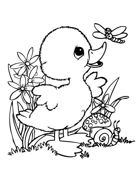cute baby duck coloring pages google search kids