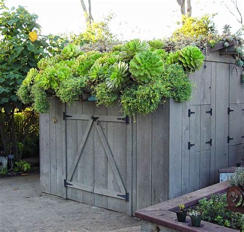 Green Roof For Shed shed w green roof exterior decor landscape