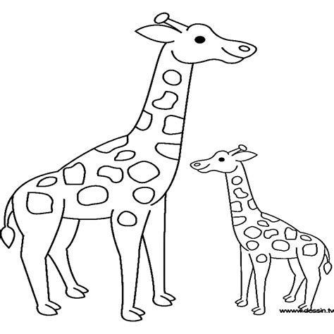 imagenes de jirafas tomando agua dibujos para colorear de jirafas animadas