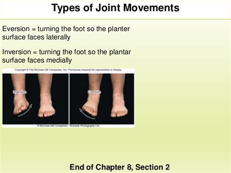 chapter 8 section 2 section 2 chapter 8 joint movements