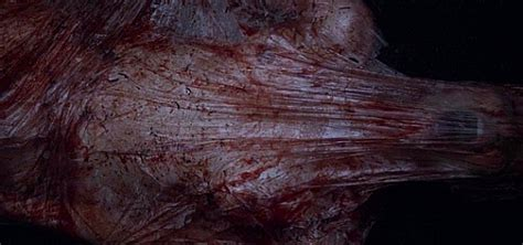 The Horror Club VOD Review Starry Eyes
