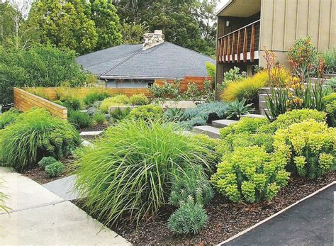 easy care front yard landscaping 45 best images about plant list collage on