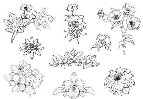 hand drawing pattern photoshop hand drawn flower brushes pack free photoshop brushes at