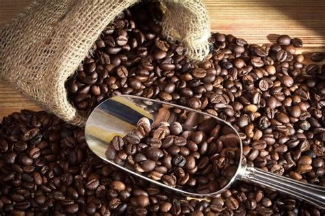 coffee beans wholesale  high quality coffee beans  affordable rate worthview