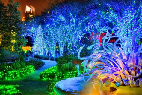 gorgeous holiday lights at atlanta botanical gardens gac