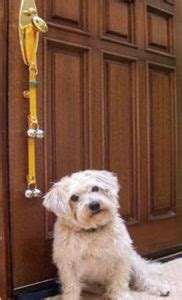 how to a to ask to go outside your to ring a door bell to ask to go outside pooch portal