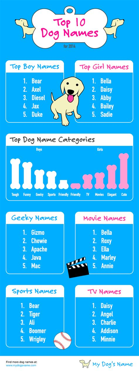 space names for dogs bay area primal canine top 10 names of 2014