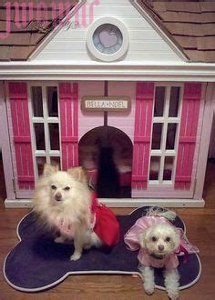 tiki hut dog house dog inspiration on pinterest dog houses tiki hut and dog closet