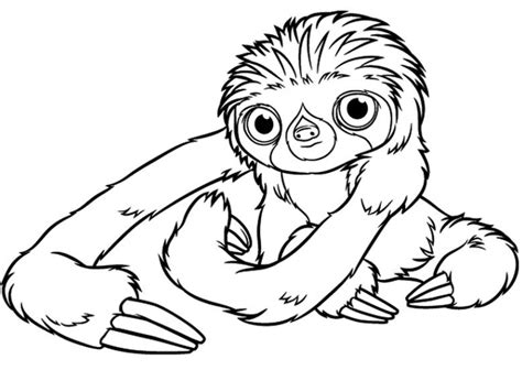 a hilarious sloth coloring book for adults and books ausmalbilder f 252 r kinder die croods 3