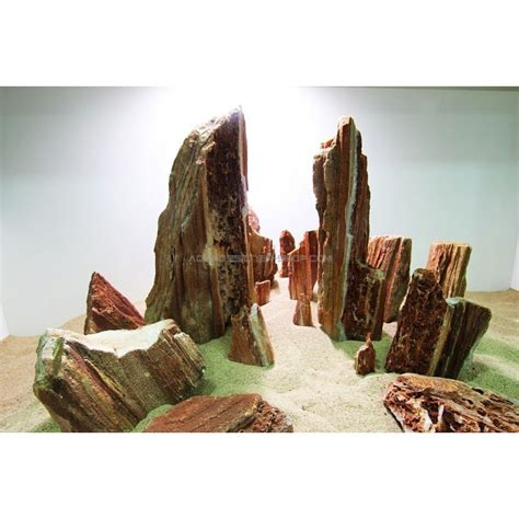 wood aquascape wood stone roche aquarium pierre aquascaping d 233 cor aquascape