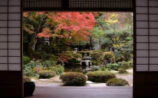 japanese garden in autumn pictures photos and images for