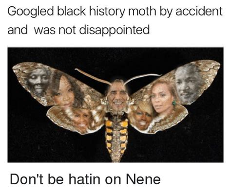 Moth Meme - funny disappointment memes of 2017 on sizzle dank