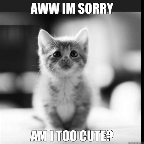Too Cute Meme Face - aww im sorry am i too cute misc quickmeme