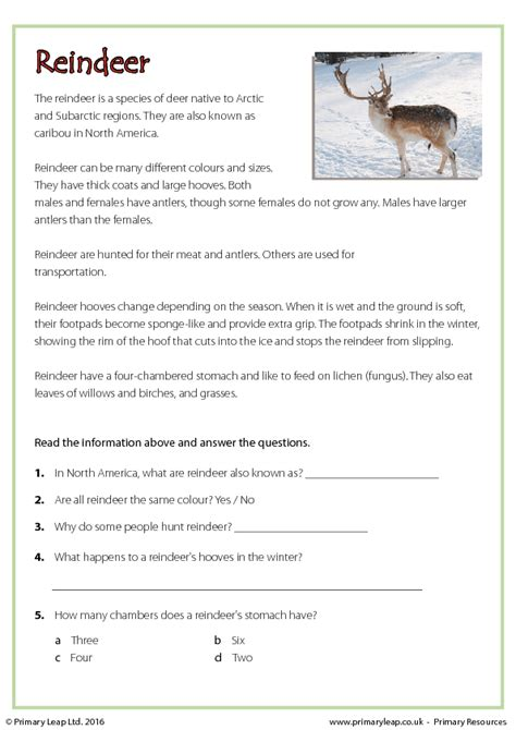 worksheet reindeer reading comprehension