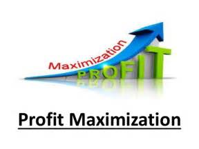 Home Design Alternatives by Profit Maximization