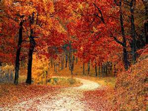 best fall colors in usa top 10 places to see fall colors in the usa attractions