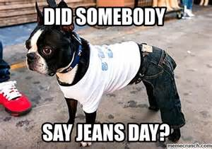 Jeans Meme - dog jeans day