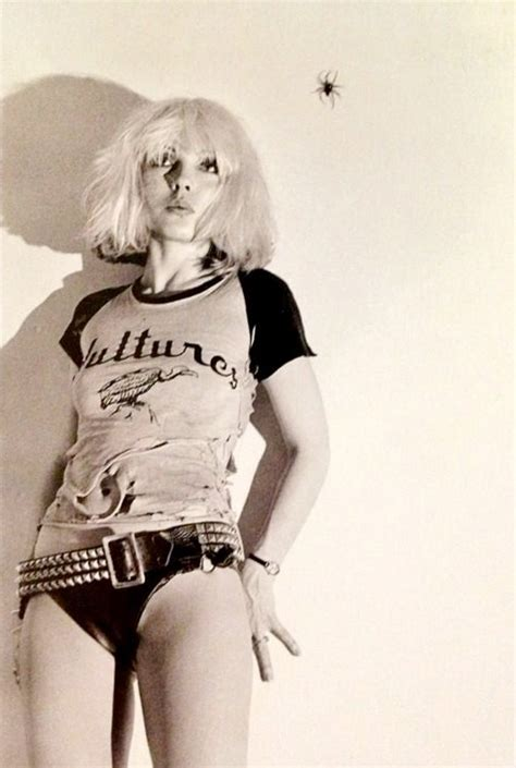 44 best images about gregory s blondie other yorkie s on 32 best images about debbie harry blondie on pinterest