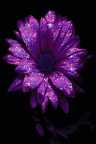 glitter wallpapers of flowers purple metallic flower live wallpaper for android free