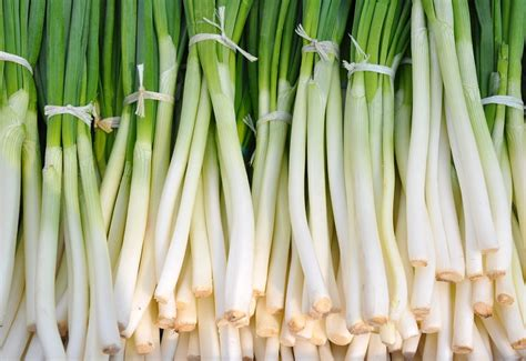 Free photo: Vegetables, Green Onion, Food   Free Image on Pixabay   700042