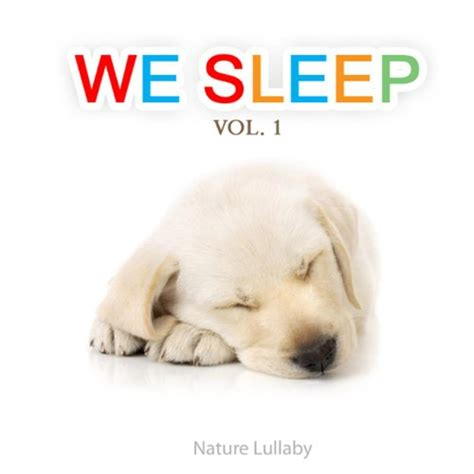 cpap for dogs stop snoring operation nz sleep aids for dogs solution for snoring india treatment