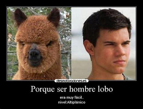 lobo haircut search results for hombres lobos imagenes de hombre lobo