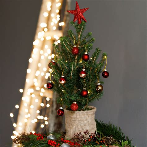 mini christmas trees are making a big impression ideal home