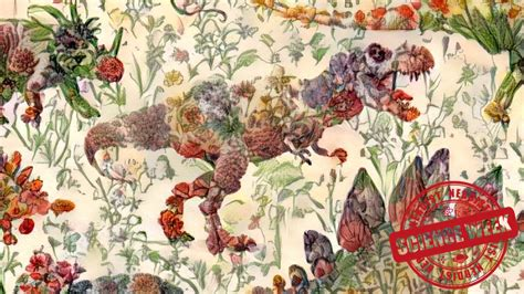 Neural Network Merges Dinosaurs With Flowers Fruit And