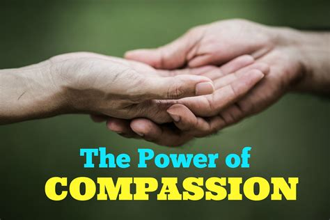 the compassionate organization and the who to work for them books using compassion to fight bullying and harassment