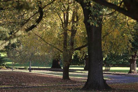 Warrnambool Botanic Gardens News Focus Warrnambool Botanic Gardens A Treasured City The Standard