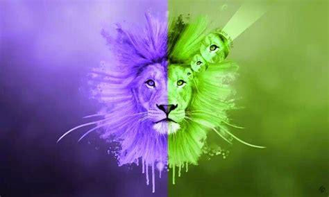 imagenes full hd de leones le 243 n de judah fondo de pantalla fondos de pantalla gratis