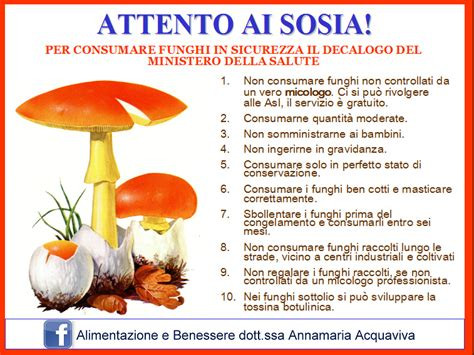avvelenamento alimentare sintomi funghi 10 regole per sceglierli in sicurezza