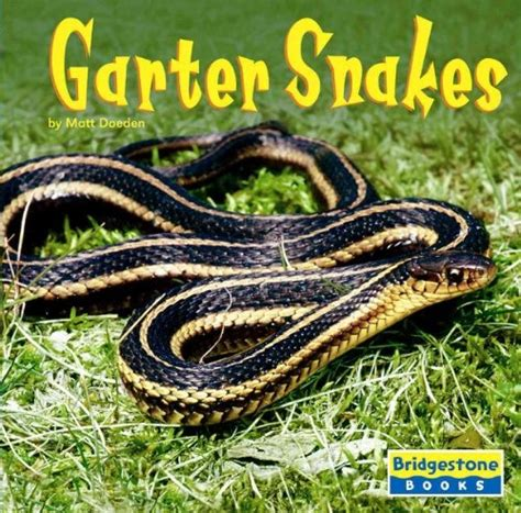 Garter Snake For Pet 19 Best Images About Reptile Snake On Tiger