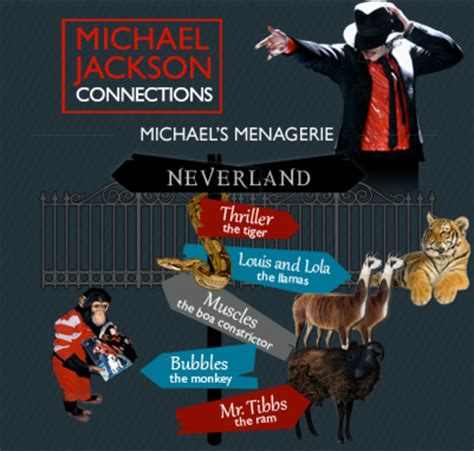 michael jackson graphic biography happy birthday michael jackson an infographic of his