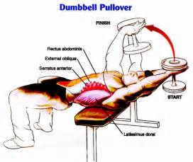 Chest press is possibly the best exercise for the inner chest imo