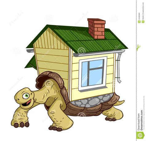 turtle house turtle royalty free stock images image 35480989