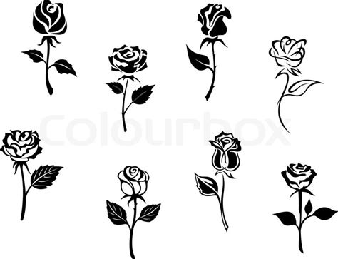 Rose flowers Stock Vector Colourbox