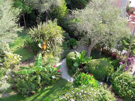 giardini rivista italian botanical heritage 187 giardino di gianmarco bernocchi