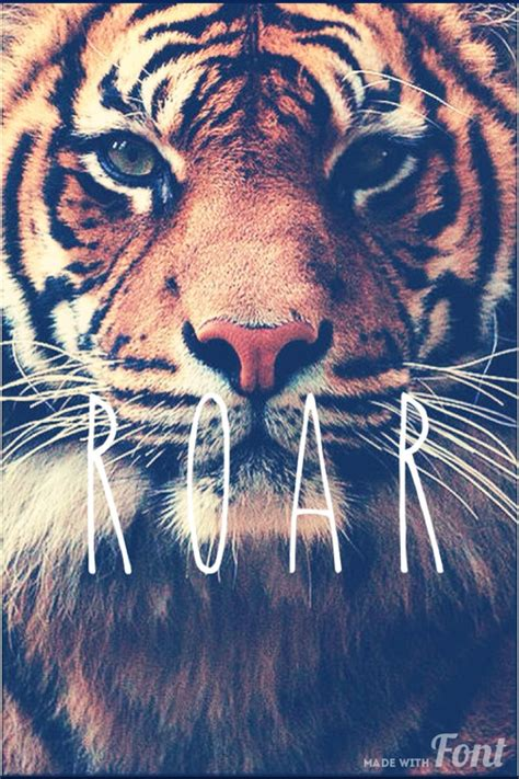 imagenes de leones swag tiger tumblr hipster wallpaper www pixshark com images